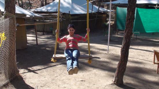Pine Hills Eco Camp: swinging