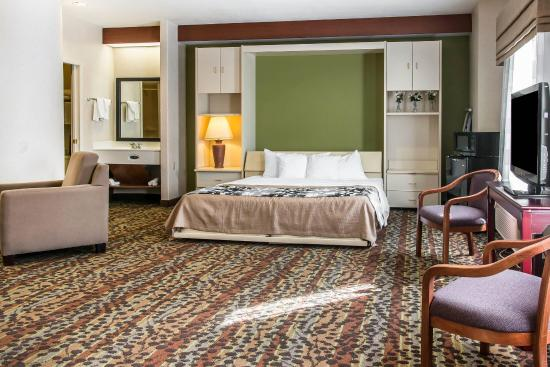 Milan, MI: Guest room