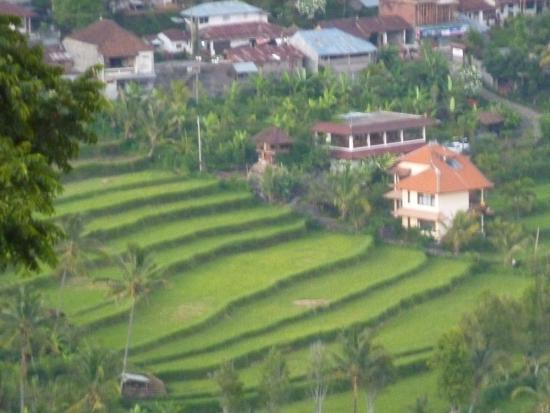 Aditya Homestay: northwest view, off same balcony
