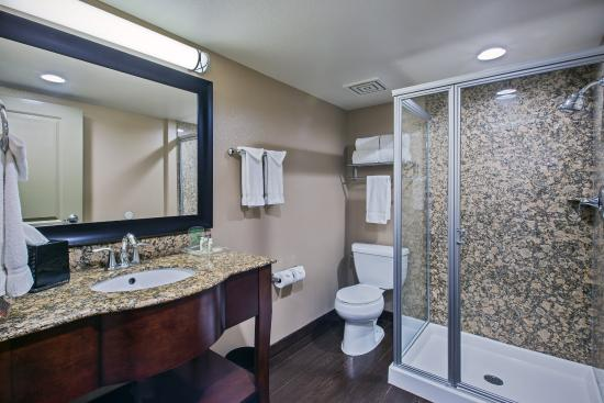 Holiday Inn Hotel & Suites Anaheim - Fullerton: Standard Guest Bathroom