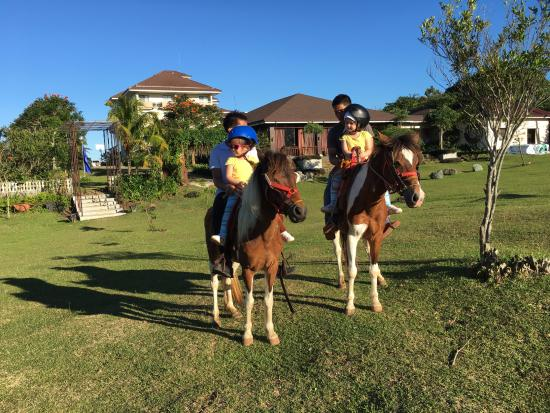 Hotel Kimberly: Riding the resident Ponies