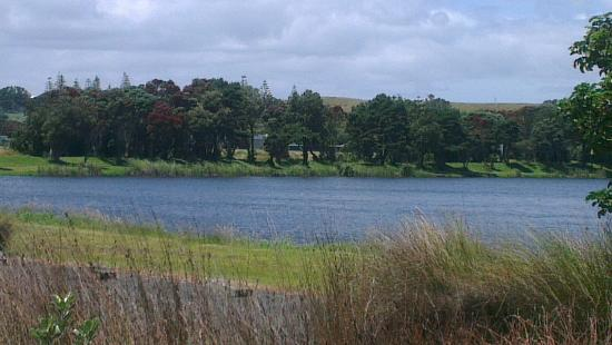 New Plymouth, Yeni Zelanda: IMAG4068_large.jpg