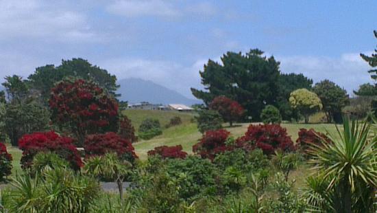 New Plymouth, Yeni Zelanda: IMAG4059_large.jpg