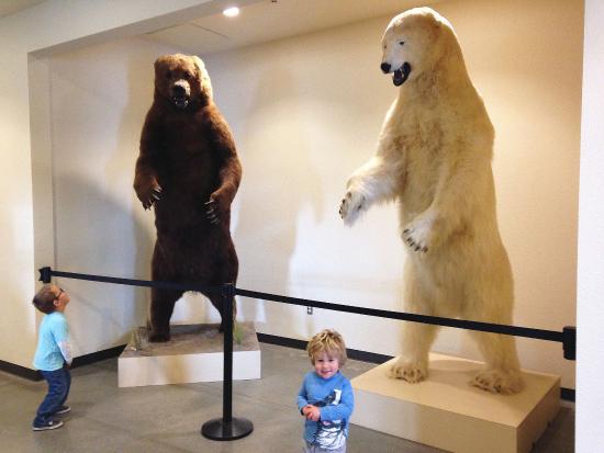 Modesto, كاليفورنيا: Entrance to the Museum
