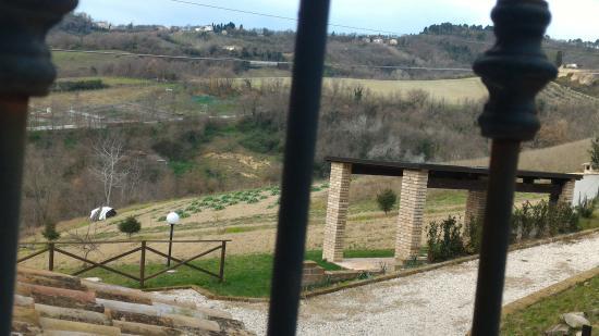 Montalto delle Marche, Ιταλία: Struttura curata nei particolari...