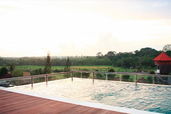 rooftop pool picture of the evitel resort ubud ubud tripadvisor rh tripadvisor co za