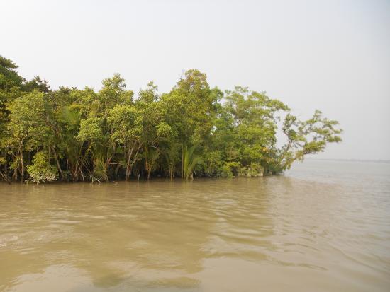 Khulna City, Μπανγκλαντές: Sundar bon