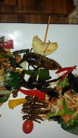 Food - Bugs Cafe Photo
