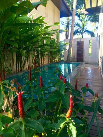 Chaweng noi pool villa booking