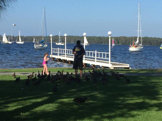 Mannering Park, Australia: photo4.jpg