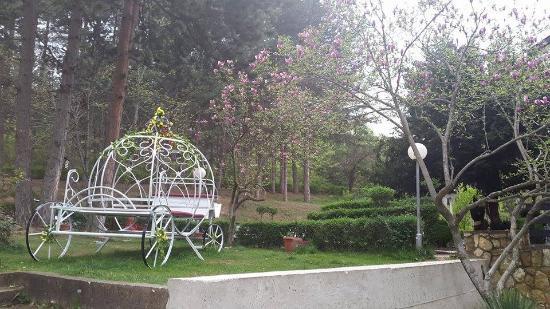 Kocani, Makedonien: Cinderella's chariot