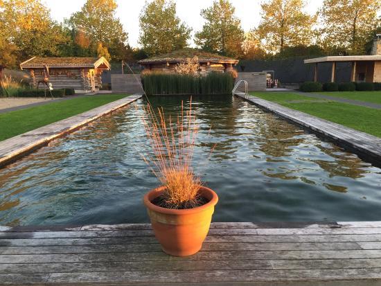 Roeselare, Belgium: Zwemvijver en zicht op Kelo sauna en meditatie/banya sauna