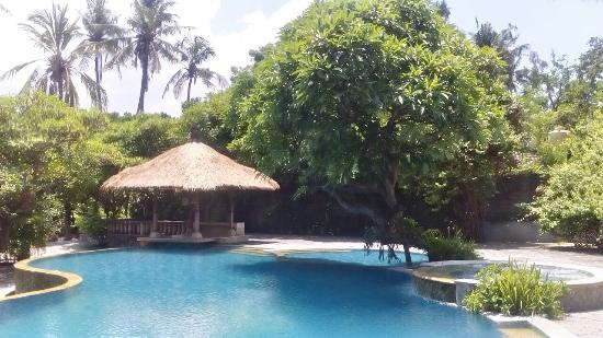 Nirwana Seaside Cottages: The pool