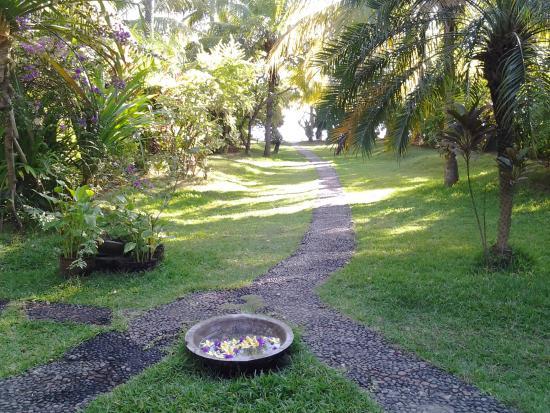 Jardin picture of bali sandat guest house bondalem for Au jardin guest house riebeeckstad