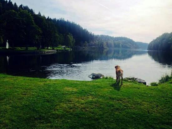 Trollhattan, Szwecja: FB_IMG_1445079218784_large.jpg