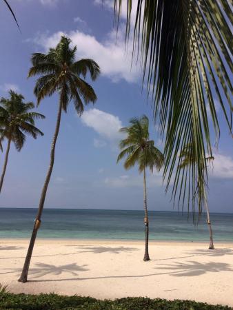 The Residence Zanzibar: Plage marée haute.