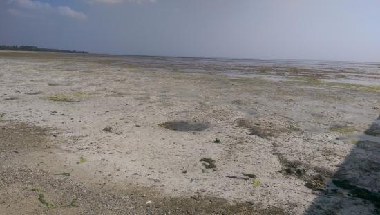 The Residence Zanzibar: Plage marée basse.