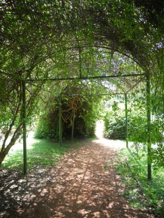 Entre Libros Hotel & Hostel: Jd Botânico