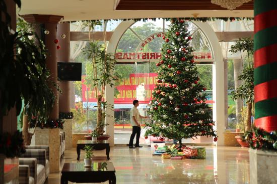 Nha Trang Lodge: Лобио