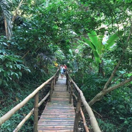 Hidden Valley Springs Resort: Beautiful natural surroundings