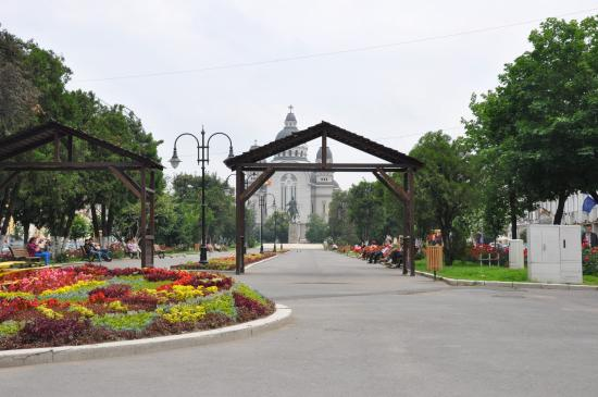 Restaurants in Tirgu Mures