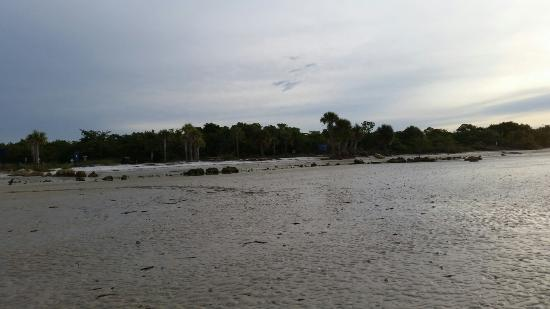 Bunche Beach: 20160113_080055_large.jpg