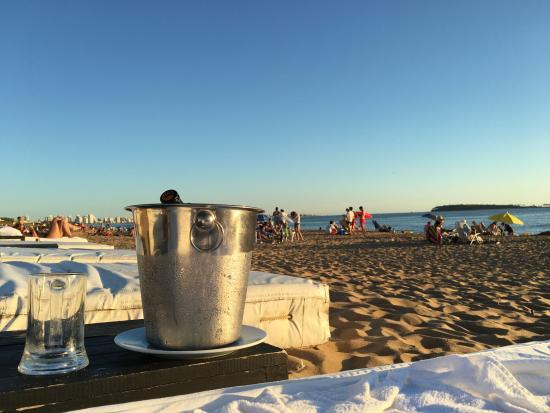 Serena Hotel Punta del Este: Sobre la arena