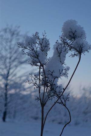 Baltezers, Letonia: Baltvilla in winter