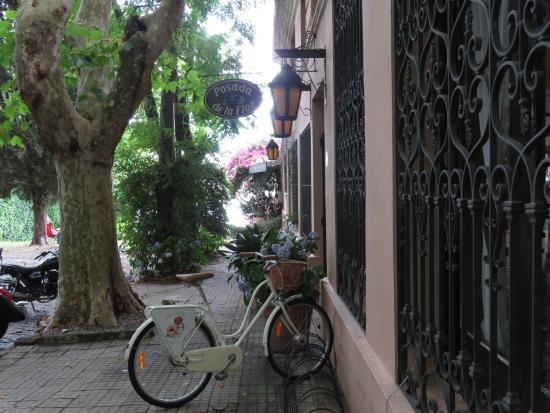 Posada de la Flor: Entrada con río al fondo y bicicletas de cortesía