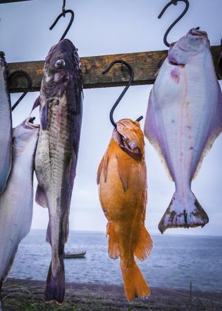 Larsen Bay, อลาสกา: good days take