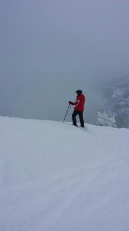Panorama, Canada: About to drop into the powder