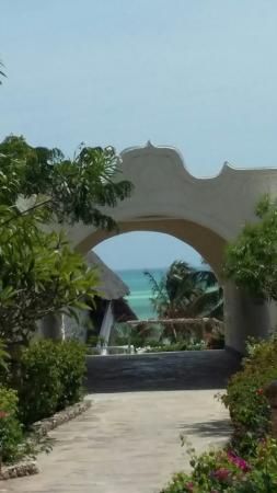 Jacaranda Beach Resort: 20160107_130221_large.jpg