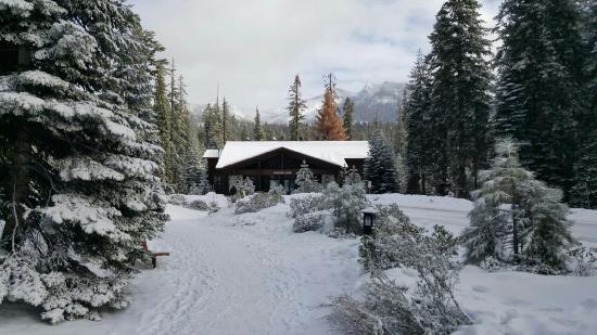 Wuksachi Lodge: 835_large.jpg