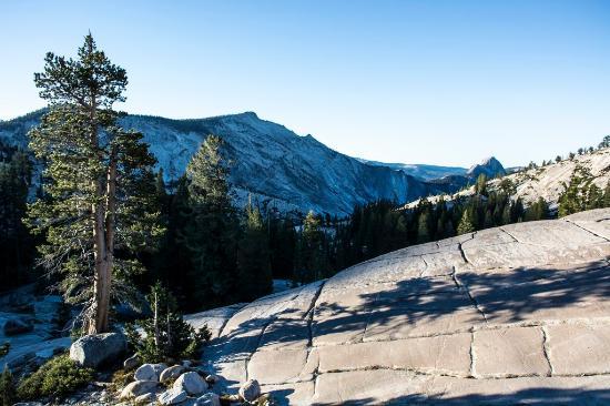 Lee Vining, Καλιφόρνια: Widok z Tioga Pass