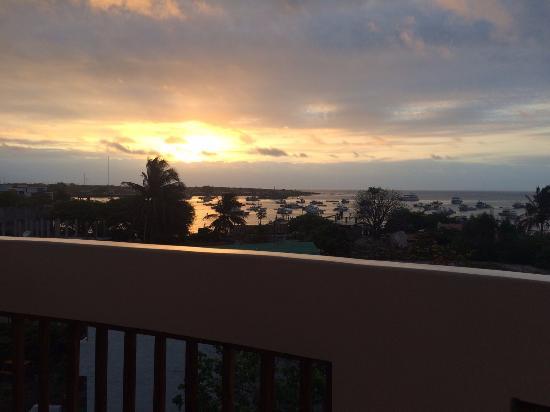 Casa Iguana Mar y Sol: Vista do terraço