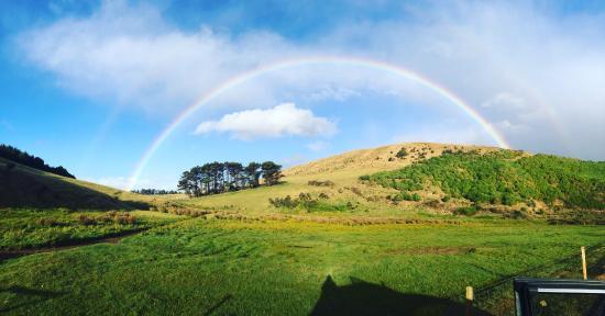 Allans Beach Farmstay: Spectacular rainbow we saw driving back to farm