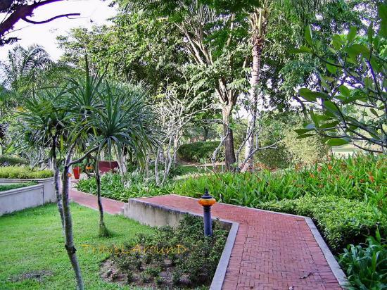 LHC Phuket Resort : ทางเดินในสวน