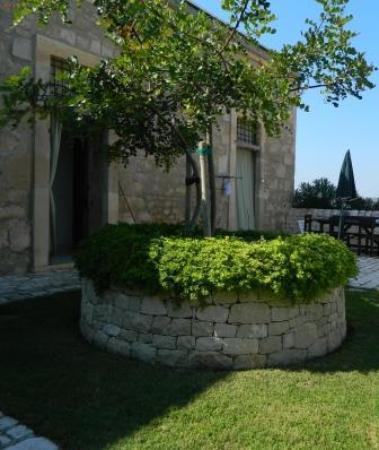 Agriturismo Re Carrubo: carrubo e muro a secco in giardino interno
