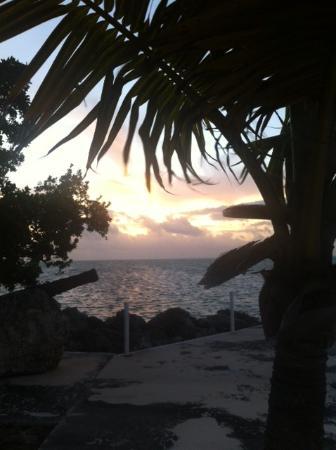 Diver's Cove : Sunrise