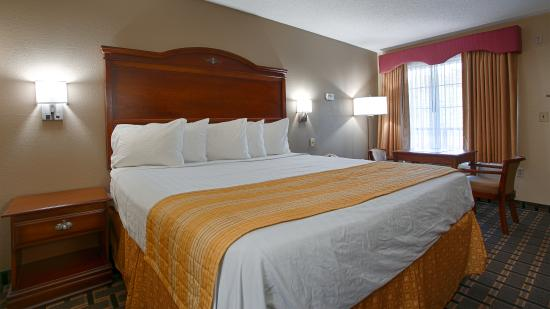 BEST WESTERN Allatoona Inn & Suites: King Room