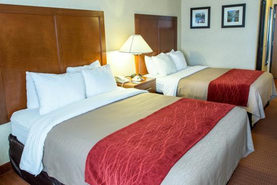 Comfort Inn Denver Southeast: Standard Queen Room