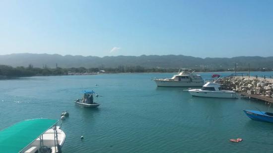 Montego Bay Marine Park : Bahía