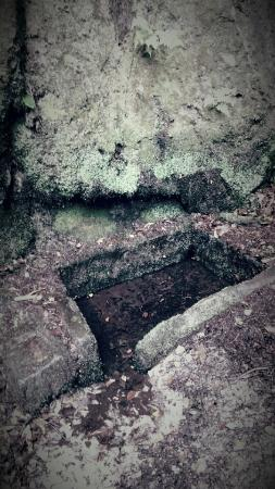 Alderley Edge, UK: The Holy Well