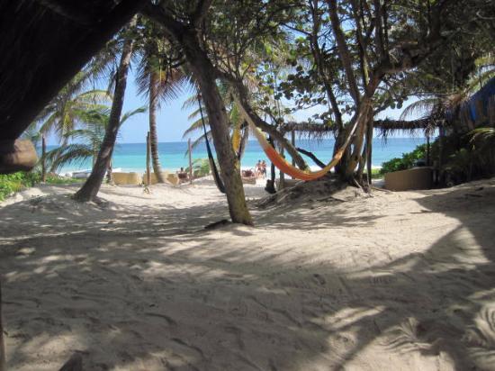 Playa Xcanan Cabanas Tulum : The view from our cabanas