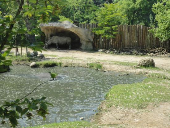 parco natura viva verona video tour - photo#35