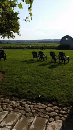 Westport Rivers Vineyard & Winery: Serene