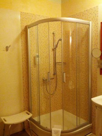 Pazaislis Park Hotel : ванна