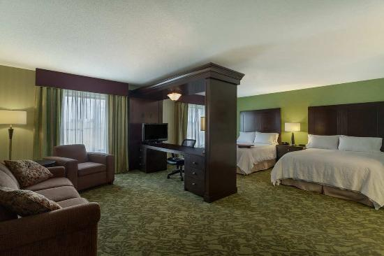 Clinton Township, MI: 2 Queen Room