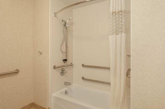 Clinton Township, MI: Accessible Bathroom with Tub