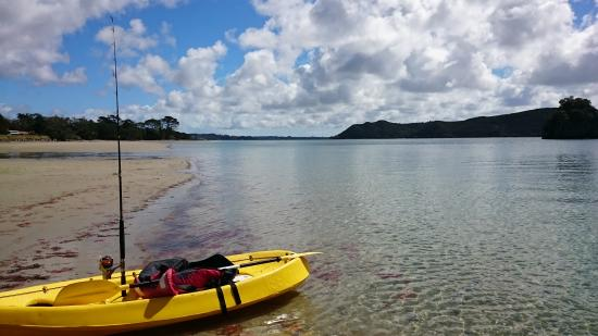 Wagener Holiday Park : Kayaking in the Houhora Harbour